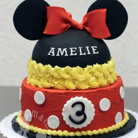 A Mouseketeer's Birthday